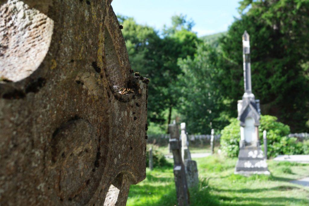 Glendalough | schabakery.com