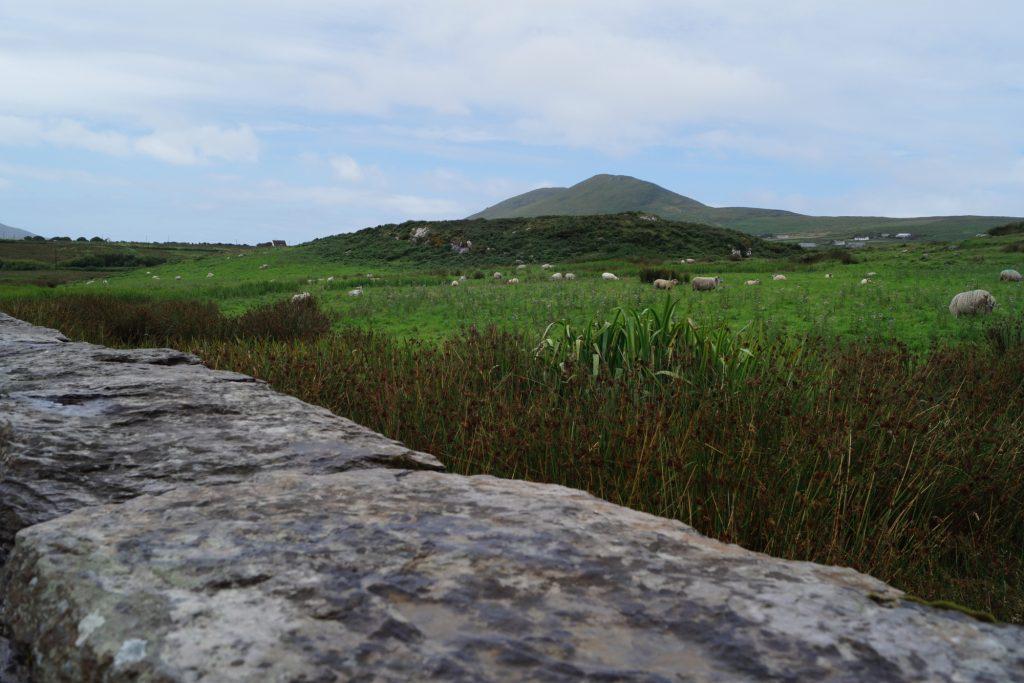 Leacanabuaile Stone Fort | schabakery.com